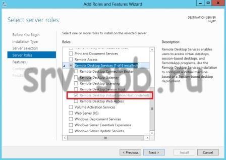 Remote Desktop Virtualization Host
