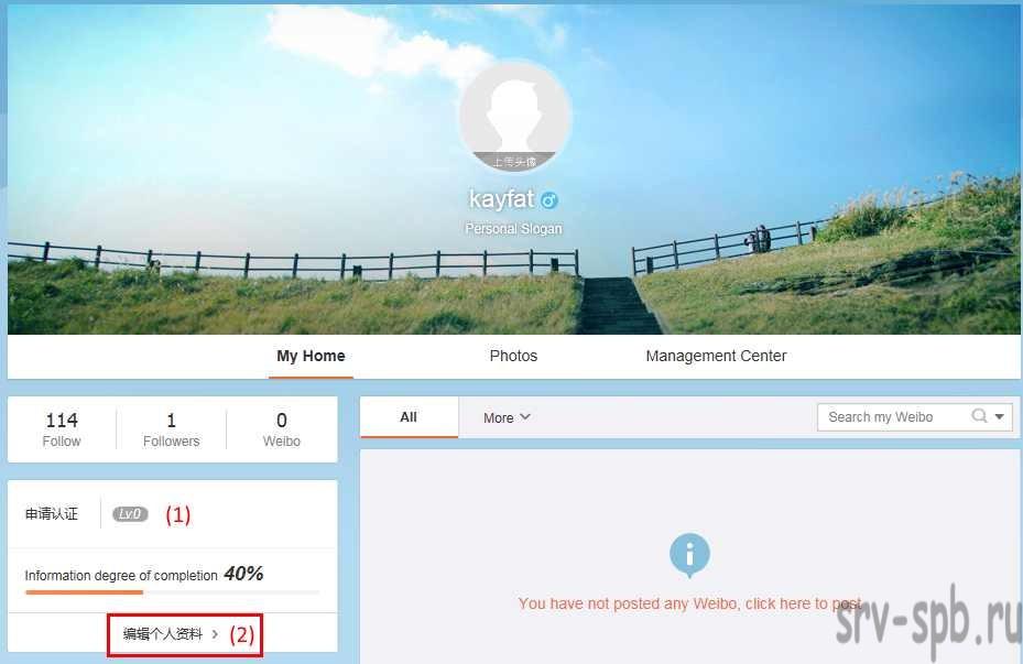 Заполнение профиля weibo